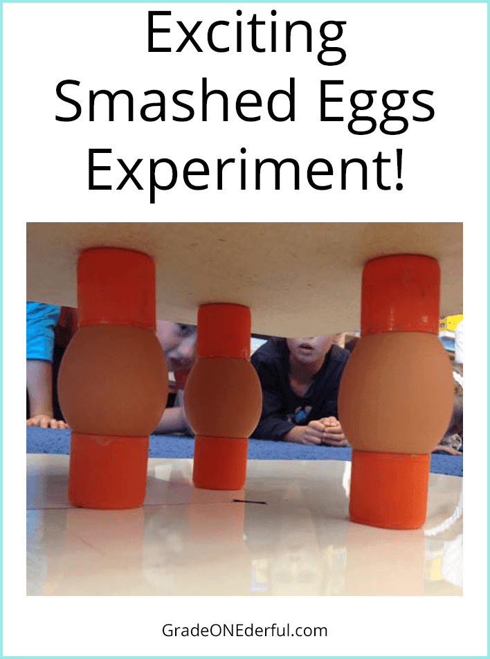 Experiment in a grade 1 class showing how much compression force raw eggs can take.