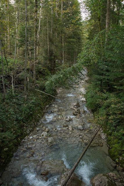 Unternberg Gipfeltour  Wandern Ruhpolding  Wanderung Chiemgau  Unternberg-Branderalm-Seehaus 13