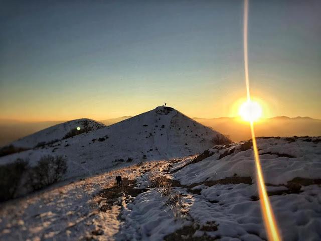 The Avenue's Twin Peaks