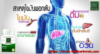 สมุนไพรรักษาโรค ตรีผลา แคปซูล  สรรพคุณ ประโยชน์  ผลข้างเคียง  ล้างสารพิษ  ดีท็อกซ์ สมุนไพรล้างสารพิษ  ไขมัน  ทำความสะอาดร่างกาย  ล้างพิษ  ไขมันพอกตับ วิธี กิน  สมุนไพรดีท็อกซ์ ล้างพิษ ราคาส่ง ราคาถูก