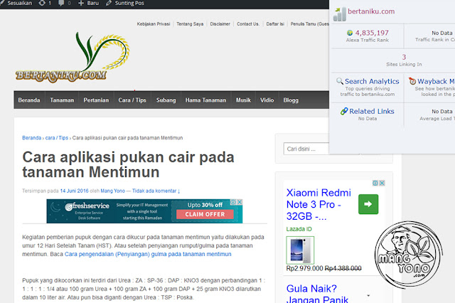 Mang, kenapa membuat blog WordPress self hosted (WordPress.org)?.