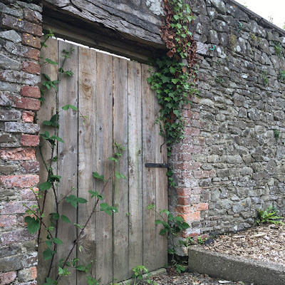 Door in the walled garden at Tapeley