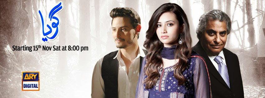 Ramblings of a Pakistani Drama Fan: A Batch of New Shows