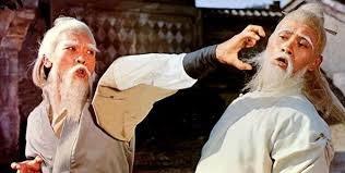 Shaolin VS Wutang Setup Download