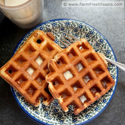 A hearty whole grain waffle flavored with maple syrup and peanut butter. These also have a bonus crunch from crumbled bits of crisply cooked bacon baked right into the waffle.