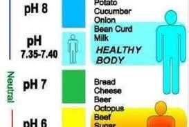ph tubuh yang baik bagi tubuh
