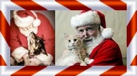 Picture of Santa with cat and dog