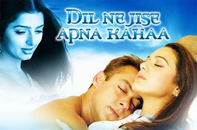 Poster Of Bollywood Movie Dil Ne Jise Apna Kaha (2004) 300MB Compressed Small Size Pc Movie Free Download worldfree4u.com