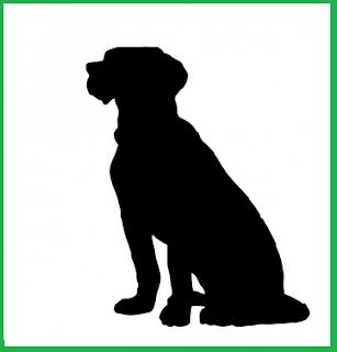 Apakah Anjing Mengenali Tuannya di Dalam Sebuah Gambar