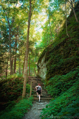 http://www.redbubble.com/people/dlamb/works/15403209-cliff-side-stairs-on-rim-trail-of-robert-treman