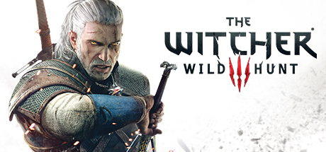 Msvcr110.dll The Witcher 3 Download | Fix Dll Files Missing On Windows And Games