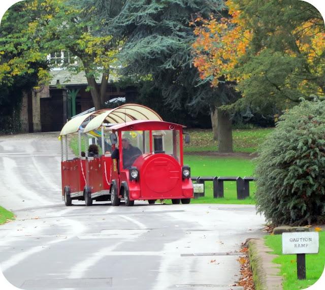 Walton Park train