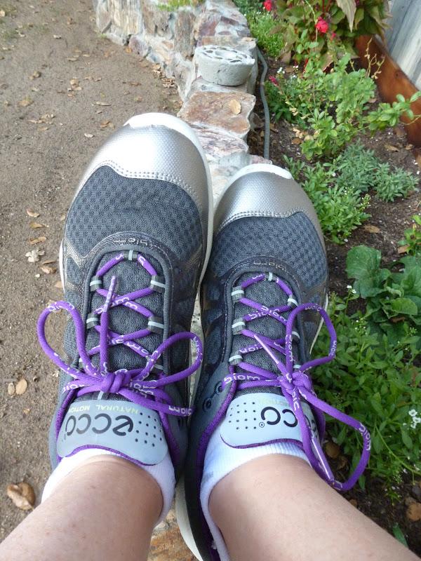 58a09767991b A Runners Fuel  Ecco Biom Running Shoe Review