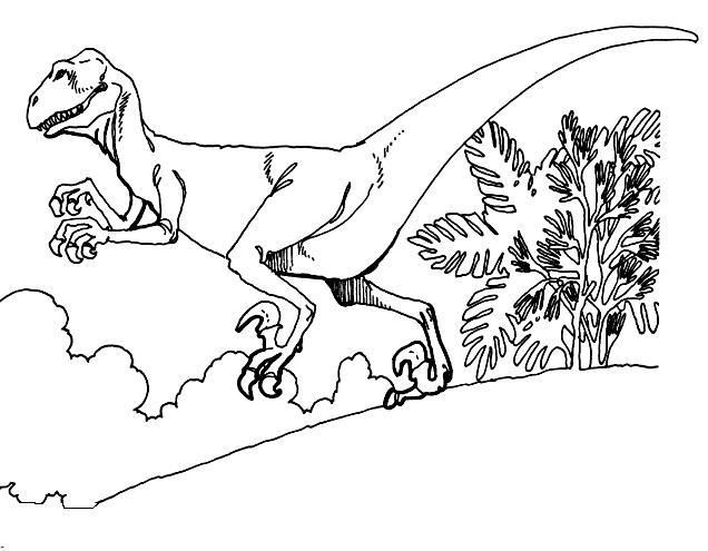 Mandalas Para Colorear Dinosaurios Animales De Leyenda: Dinosaurios Para Colorear: Deinonychus Para Colorear