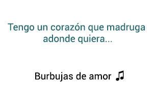 Juan Luis Guerra Burbujas De Amor significado de la canción.