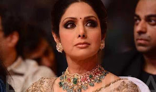 sridevi-works-according-to-director-s-say