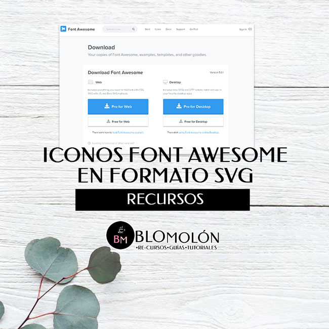iconos_awesome_en_formato_svg