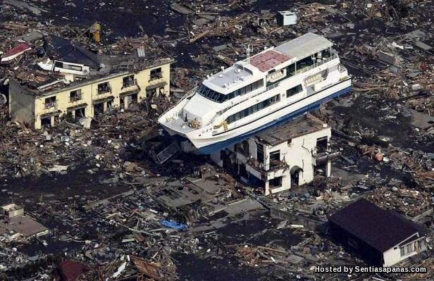Tsunami 5 Years [7]