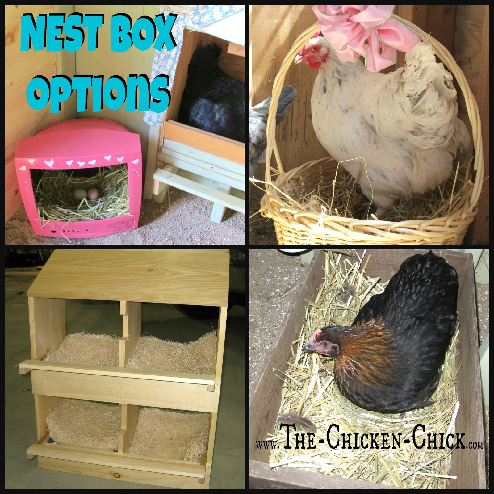 Be creative with nest boxes, the options are limitless: clean, empty kitty litter containers, 5 gallon buckets, baskets and upcycled televisions and computer monitors all work for laying hens!