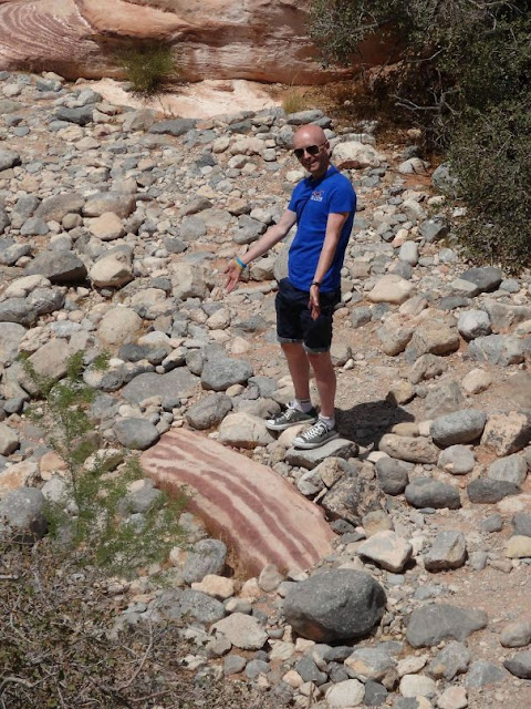 Esta pedra parece com um pedaço de Bacon gigante
