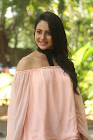 Rakul Preet Singh in lovely Pink Crop Top and Black Trousers at Jaya Janaki Nayaka success meet 044.JPG