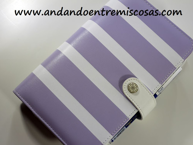 Agenda personal de Webster´s Pages
