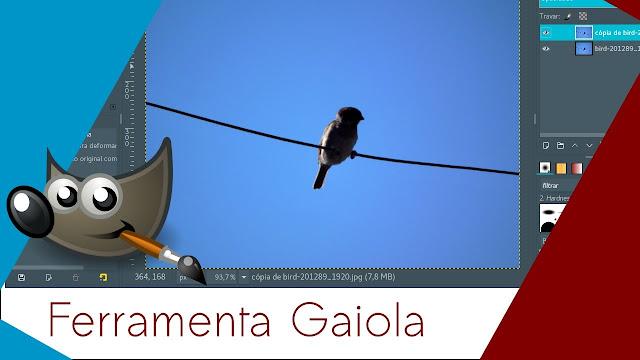 Vídeo: Veja como utilizar a ferramenta Gaiola no GIMP
