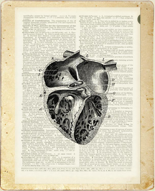 11-Vintage-Heart-Diagram-Jean-Cody-Vintage-Dictionary-Page-Art-Prints-www-designstack-co
