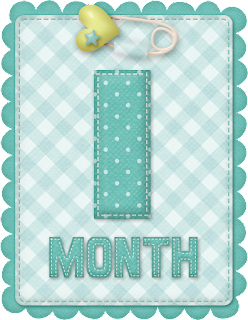 Free Printable Baby Month Counter for Boys.