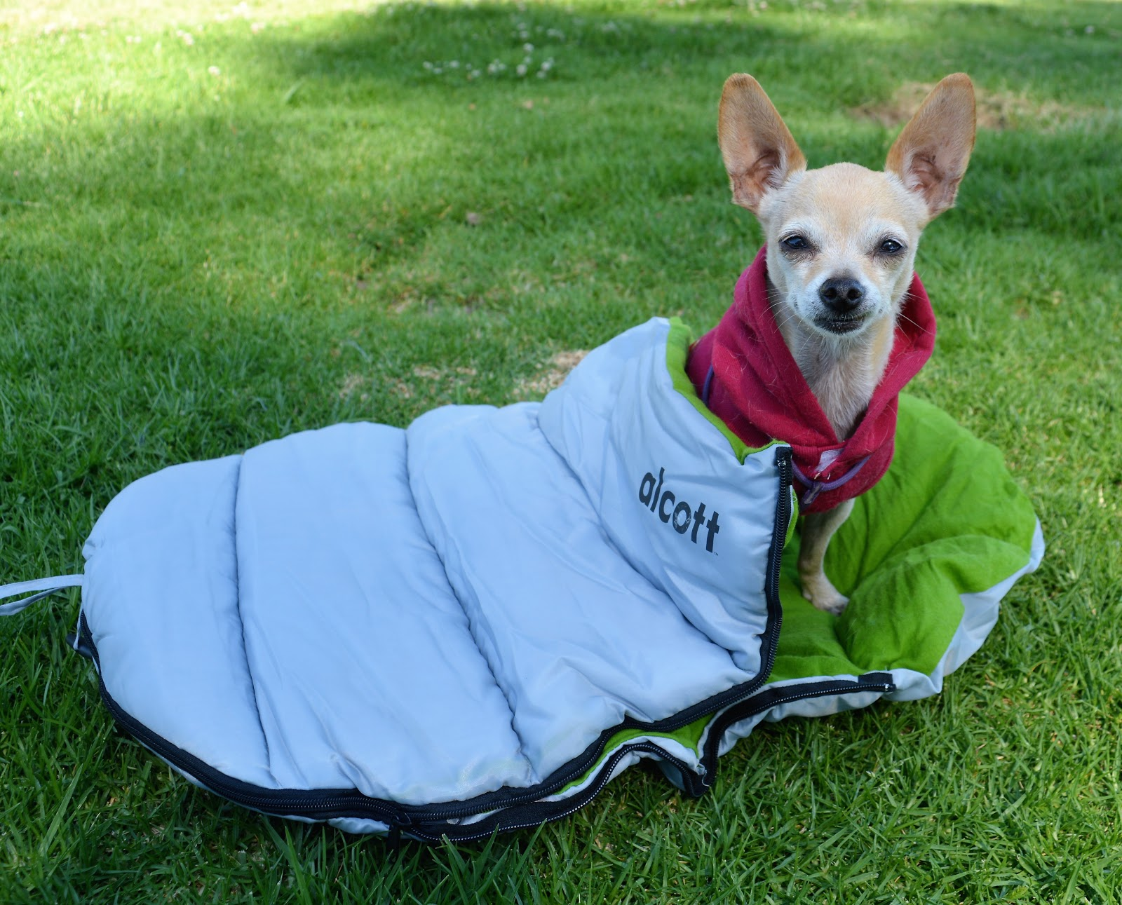 The Dog Geek Product Review Alcott Explorer Sleeping Bag