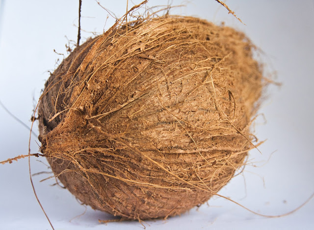 Nutrition Facts of Dried Coconut, How to Dry Coconut