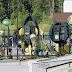 Angry Birds puisto Leppävaara/Espoo