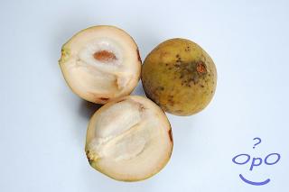 Opo - Manfaat buah kecapi untuk kesehatan