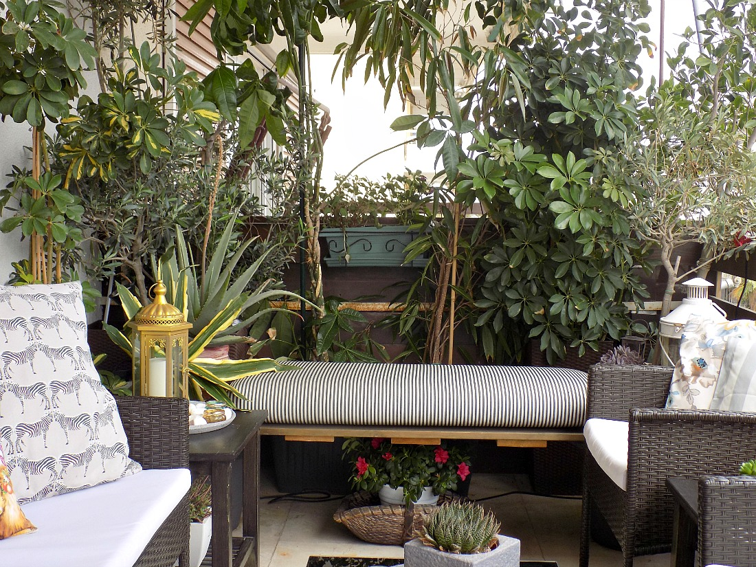 My terrace makeover