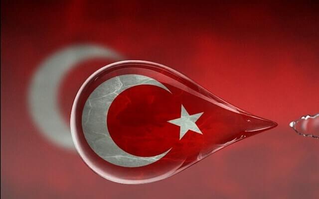 Türk-bayrağı