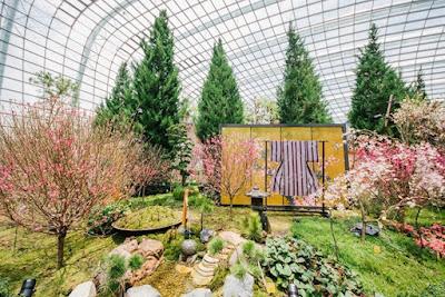 Khám phá khu nhà hoa Flower Dome, Gardens by the Bay với ưu đãi giá vé từ thẻ lên máy bay của Singapore Airlines.
