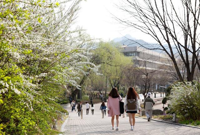 Tại sao nên chọn Hàn Quốc để du học?