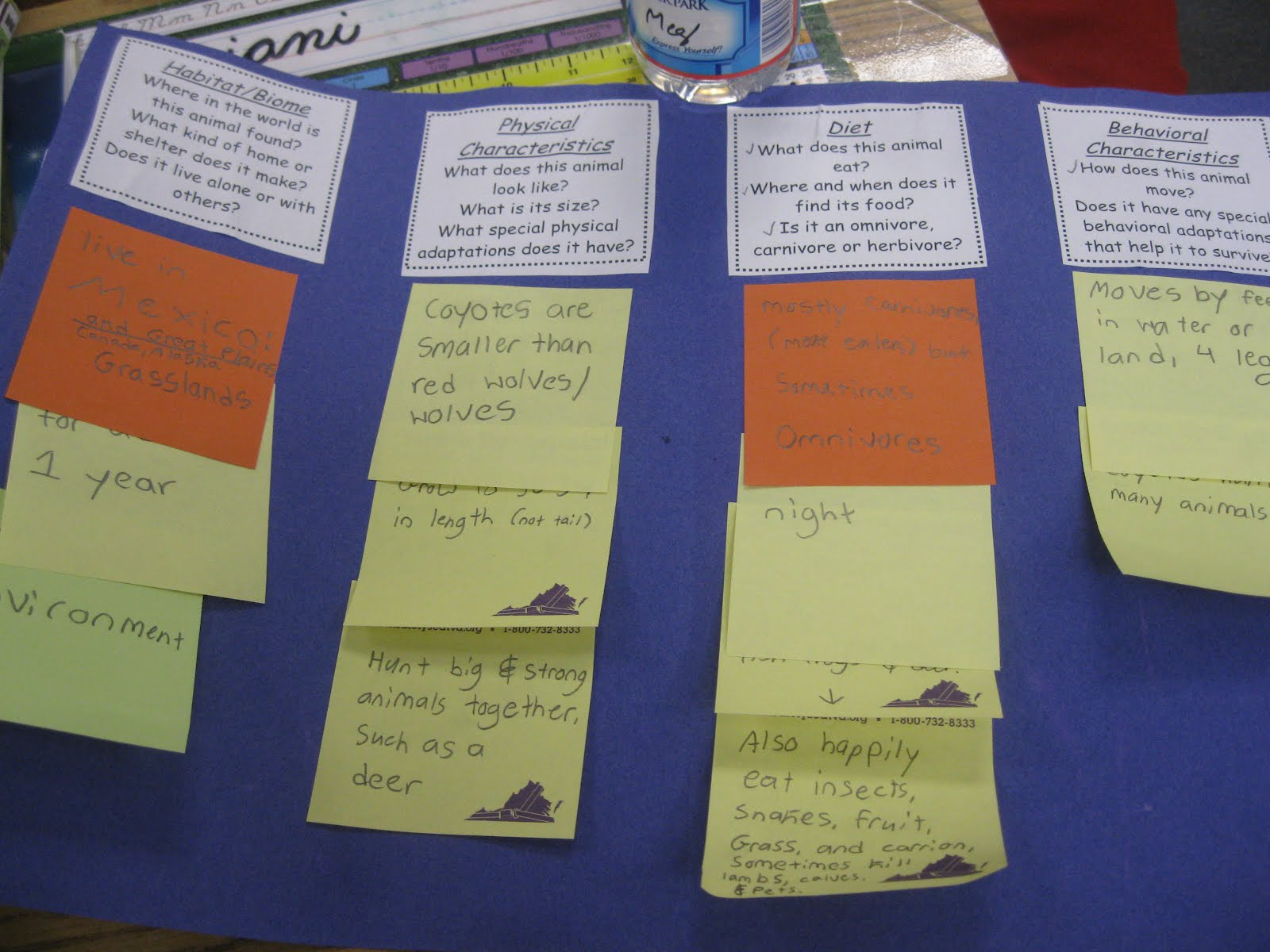 Third Grade Research Paper Samples