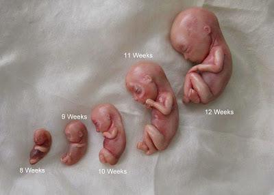 petua senang hamil