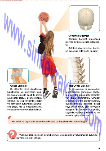 6. Sınıf Fen Bilimleri Tuna Matbaa Yayınları Ders Kitabı Cevapları Sayfa 35