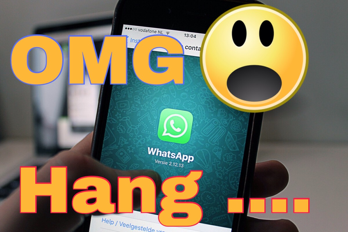how to protect your WhatsApp to gets hang by a particular message?