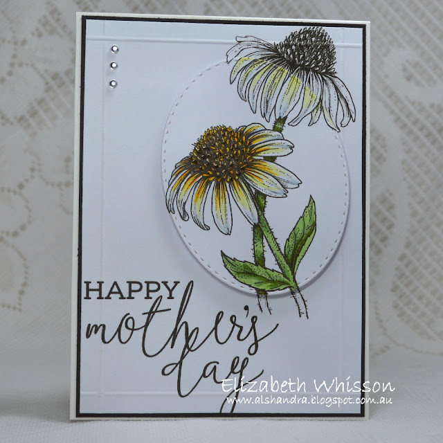 Elizabeth Whisson, Alshandra, Mother's Day, handmade card, Easy Breezy Coneflowers, PowerPoppy, Copics, scor, our daily bread designs, stitched ovals dies