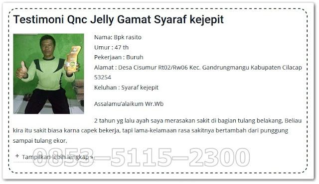 Kandungan dan Manfaat QnC Jelly Gamat Emas Asli