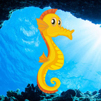 Hiddenogames Easy Escape-Seahorse