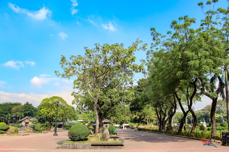 Rizal Park's simple yet captivating beauty
