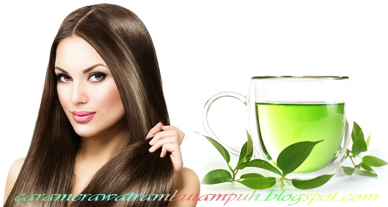 Cara Menumbuhkan Rambut Secara Alami dengan Green Tea