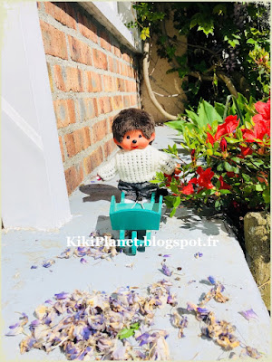 monchhichi, kiki, bebichhichi, jardin, brouette, vintage, toys life