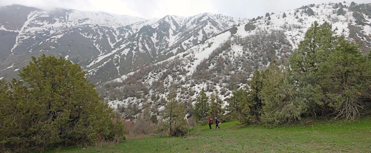 DSC02029 Panorama