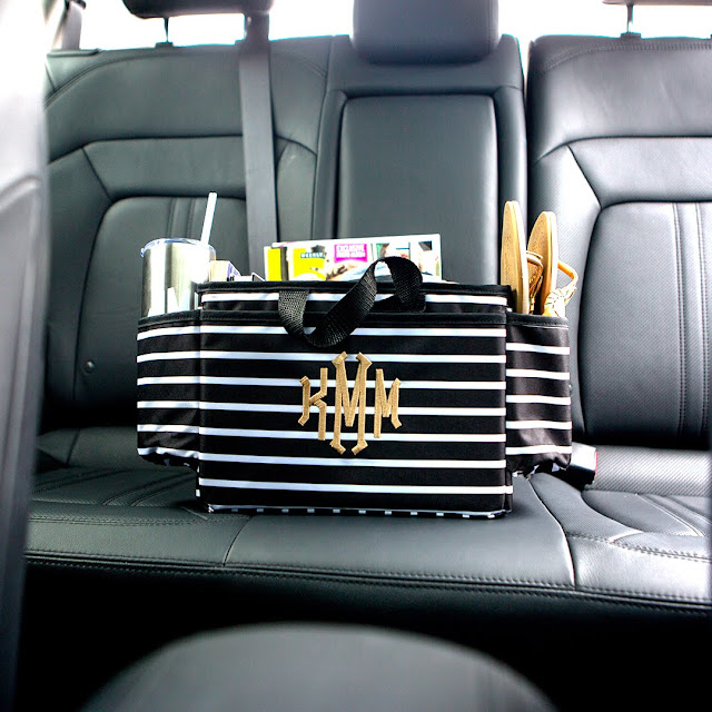 black and white stripe storage system for car