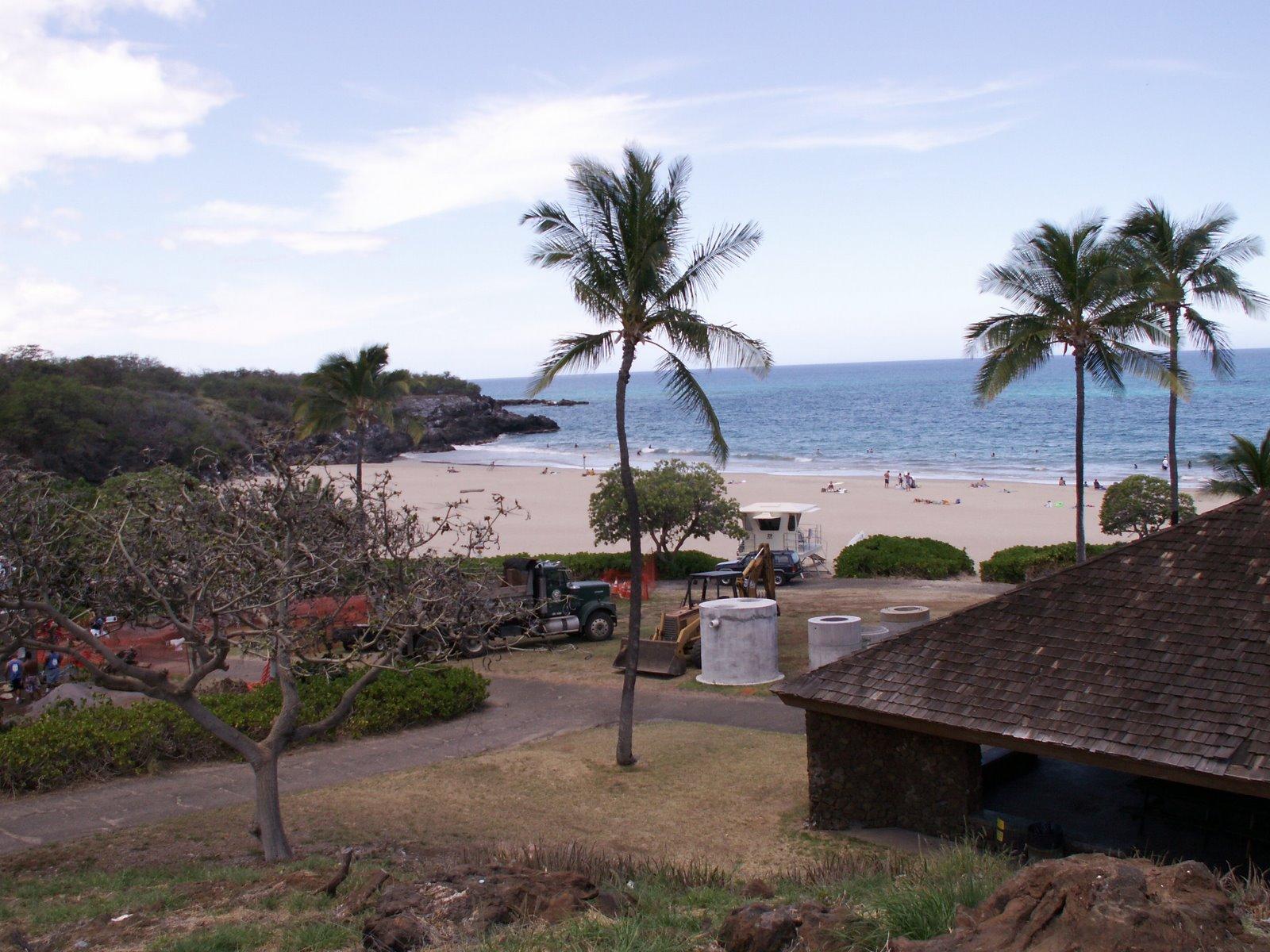 All Hawaii News: April 2011